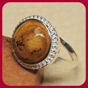 JUST IN SS Natural Picture Jasper Ring